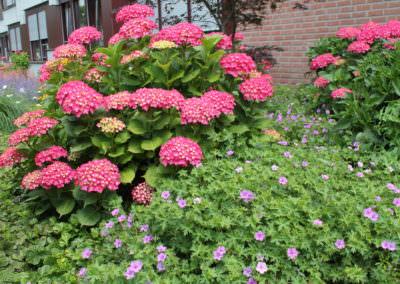 Gartenpflege Goch